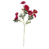Bouquet de marguerites rouges 25''