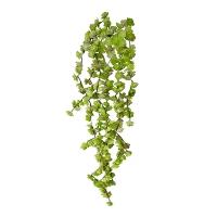 Bouquet de petites succulentes retombantes vertes, 22''