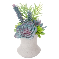 Bouquet de plantes grasses en vase