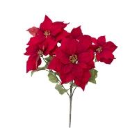 red poinsettia bush, 23''
