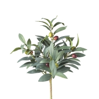 Bouquet de feuillage d'olivier 15''