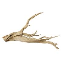 Ghostwood log 2-3'