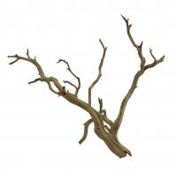 Branche de ghostwood 24-30''