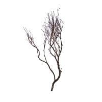 Branche de manzanita 48'', naturel