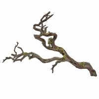 Branche de manzanita avec mousse verte 36''