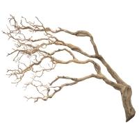 Branche de manzanita rampant 48''