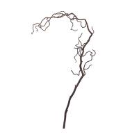 Branche de racines frisée brunes 58,5''