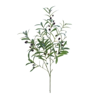 Branche d'olivier 40''