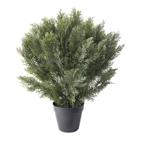 Buisson de cèdre artificiel, 30''