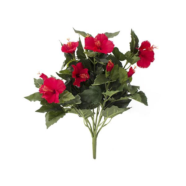 Tige d 39 hibicus rouge 19 39 39 d cors v ronneau for Hibiscus exterieur rouge