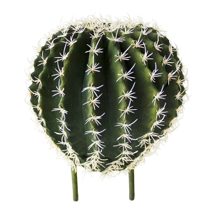 Cactus barrel sur tige, 9''