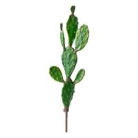 Cactus sur tige, 40''