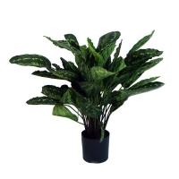 Plante artificielle, calathéa roseopicta 30''