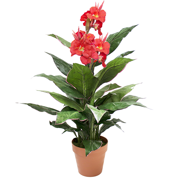 Plante artificielle canna rouge ext rieur 3 39 d cors for Plante exterieur a fleur rouge