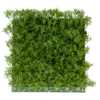 Honey Moss Square