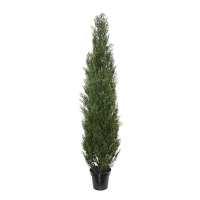 Artificial shrub, 6' Cedar