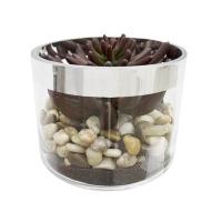 Centre de table roches et plantes grasses 6''