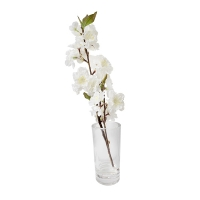 15'' White sweet cherry blossom stem in glass vase