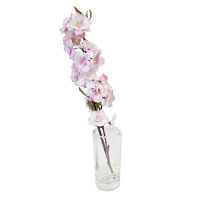 15'' Pink sweet cherry blossom stem in glass vase