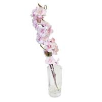 15'' Pink sweet cherry blossom stem in glass vase