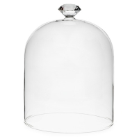7'' Glass top dome