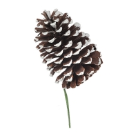 Frosted tip pinecone, 5''