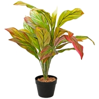 Plante artificielle, cordyline 35''