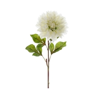 Dahlia blanc sur tige 25,5''