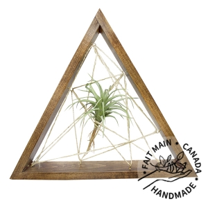 Déco murale, triangle en bois et plante d'air 18''