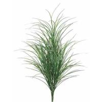 Dracaena vert et blanc 32''