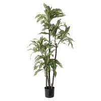 Plante artificielle, draceana 5'