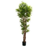 Plante artificielle, dracaena reflexa 5'