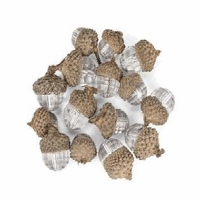 15 Clear acrylic decorative acorn   1''