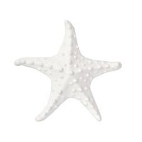 Étoile de mer 6.1x6.1x1.5''