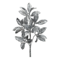 Silver glitter pittosporum spray, 23''