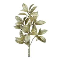 Gold glitter pittosporum spray, 23''