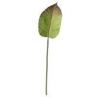 Colocasia Leaf on Stem, 29''