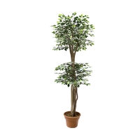 5' Artificial tree, Green & white ficus