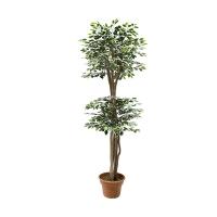 Arbre articiel, ficus de 5' vert et blanc