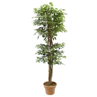 7' Artificial tree, green ficus