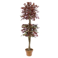 7' Artificial tree, green & red ficus