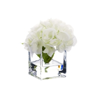 Fleur d'hydrangée blanche dans vase de vitre 5,5''