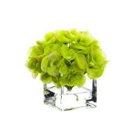 Fleur d'hydrangée verte dans vase de vitre 5,5''