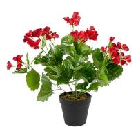 Géraniums rouge en pot, 18''
