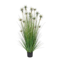 Protea and oignon grass, 55''