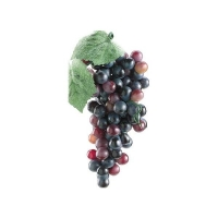 Grappe de raisins rouges 5.5