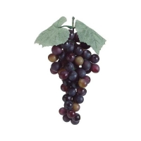 Bunch of bourgogne grapes