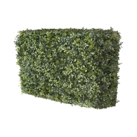 30'' Boxwood hedge