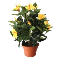 Plante artificielle, hibiscus à fleurs jaunes 14''