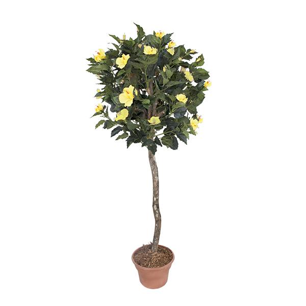 Plante artificielle hibiscus fleurs jaunes 5 39 d cors - Plante a fleur jaune 6 lettres ...